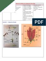 fiche-technique-4-mise-en-evidence-des-composants-d-une-fleur