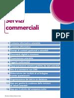 informatica servizi commerciali