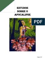 24_Estudos_sobre_o_Apocalipse