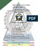 INFORME MRP-DIAZ, MEDINA, PACHECO, ZEVALLOS, TORRES (1)-convertido