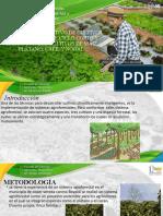Expo Cultivos Clima Medio