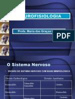 Farmaco-neurofi Adaptadpó 2