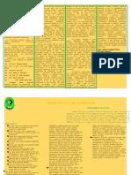 buletin informatic