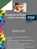 Cuidados de enfermeria en niños con Hidrocefalia