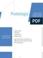 Presentacion Podologia