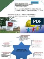 Criterios Pnf-upf Version 2