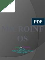MICROINFOS-1