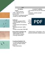Urine Sediments