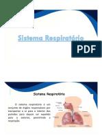 sistema respiratório novo