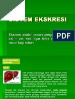 sistem-ekskresi-devy1