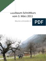 ObstbaumSchnittkursBaum2