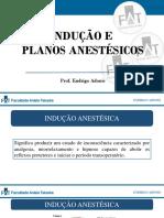 Indução e planos anestésicos