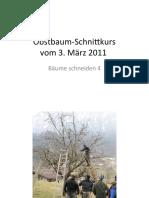 ObstbaumSchnittkursBaum4