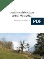 ObstbaumSchnittkursBaum6