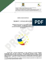 Proiect_Ghidul_Solicitantului_Investitii_Mari_pt_IMMuri_4_feb_2011