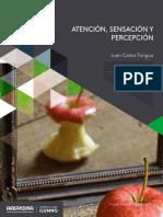 ATENCIÓN, SENSACIÓN Y PERCEPCIÓN-6-11