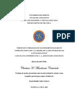 Tesis.PROGRAMA DE MANTENIMIENTO BASADO EN ttyyt