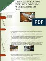 Slides Trabalho Psicologia-Desastres Naturais (1)