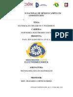 Silva Paul Resumen