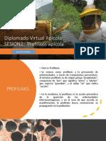 SESION2_PROFILAXIS APICOLA