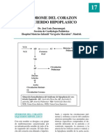 17_hipoplasico
