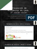 Prevención de Accidentes (1)