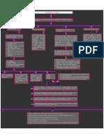 Mapa conceptual primer lectura