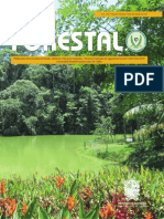 Colombia Forestal