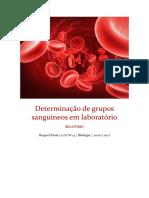 Determinação de Grupos Sanguíneos Em Laboratório