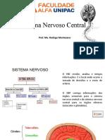 AULA 3 e 4  Sistema Nervoso Central