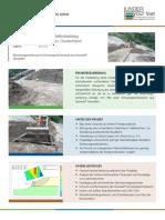 Projektbeschreibungen Rheinfelden DVOK
