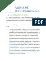 BACTERIAS DE IMPACTO AMBIENTAL RESUMEN