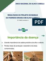 Resultados Do Projeto de Manejo Da Podridao Branca Em Alho e Cebola (1)
