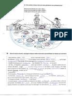 Corrigé Activités de grammaire AGF1_P53-67