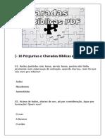 16 Perguntas e Charadas Biblicas Em PDF