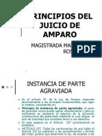 principios_juicio_amparo