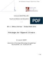 _histologie_appareil_urinaire2