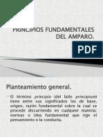 5. PRINCIPIOS FUNDAMENTALES DEL AMPARO