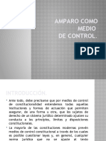 1.7. AMPARO COMO MEDIO DE CONTROL