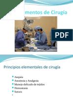 Veterinaria Fundamentos de Cirugía