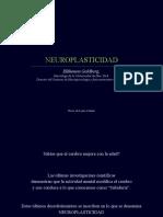 neuroplasticidad-091111093959-phpapp01