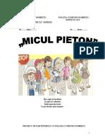 parteneriat_micul_pieton (1)