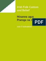 Irish Folk Custom and Belief by Seán Ó Súilleabháin