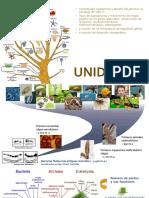 10_evolucion a Nivel de Genoma