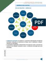resumo_1293615-bruno-eduardo_13582575-gestao-de-projetos-novo-aula-11-gerencia-de-custos