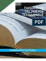 Panorama Del Nuevo Testamento COLOR