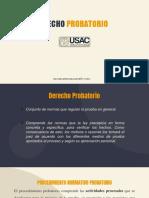 diapositivas derecho probatorio