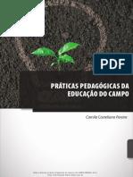 práticas pedagógicas da Educação do Campo pdf