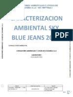 INFORME FISICO QUIMICO SKY BLUE JEANS