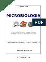 Apostila Micro 2010